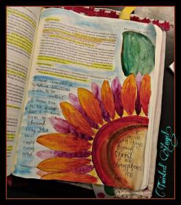 Bible Journal 7